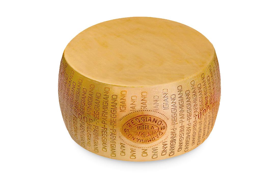 grossista formaggi cuneo