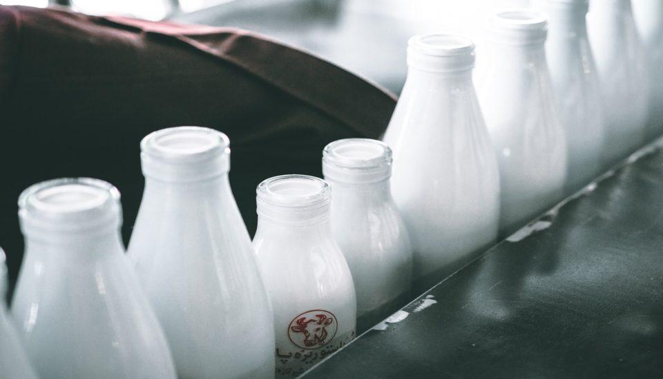 """""""World Milk Day"""" la giornata modiale del latte!"""